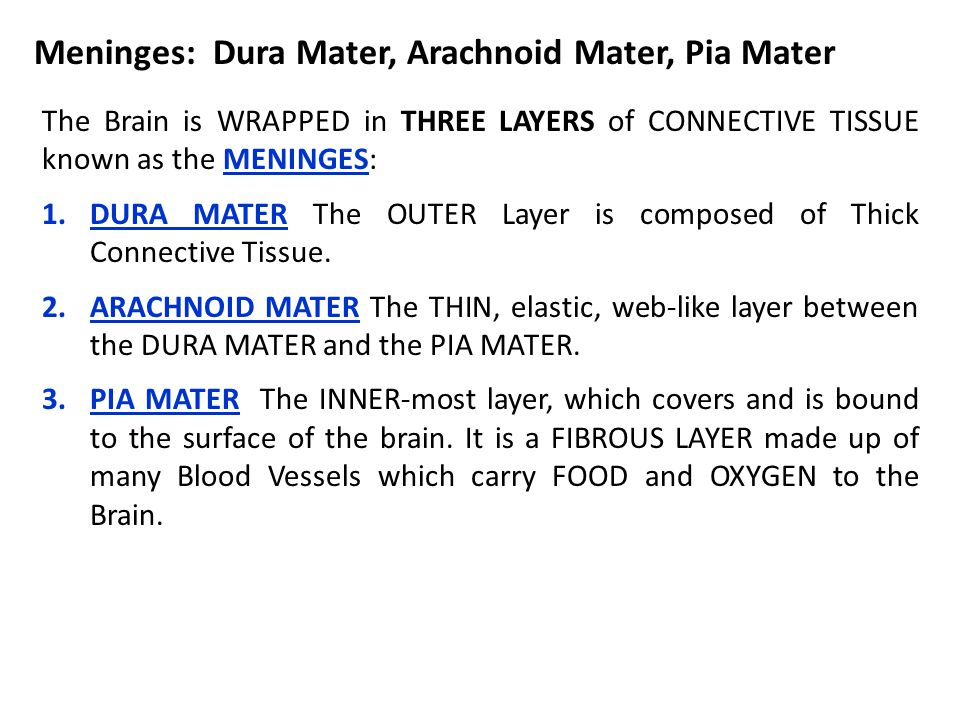 The Brain is WRAPPED in THREE LAYERS of CONNECTIVE TISSUE known as the MENINGES: 1.DURA MATER The OUTER Layer is composed of Thick Connective Tissue.