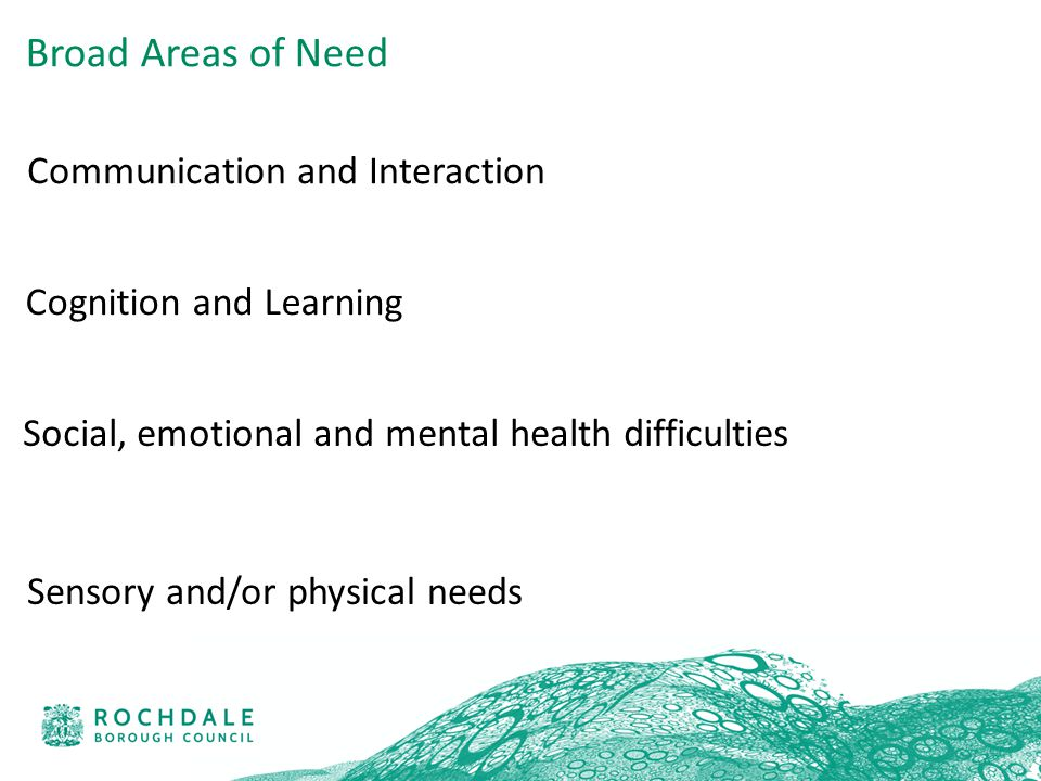 Communication and Interaction Cognition and Learning Social, emotional and mental health difficulties Sensory and/or physical needs Broad Areas of Need