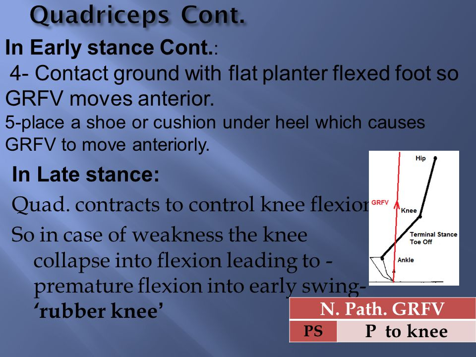 In Late stance: Quad. contracts to control knee flexion So in case of weakness the knee collapse into flexion leading to - premature flexion into earl