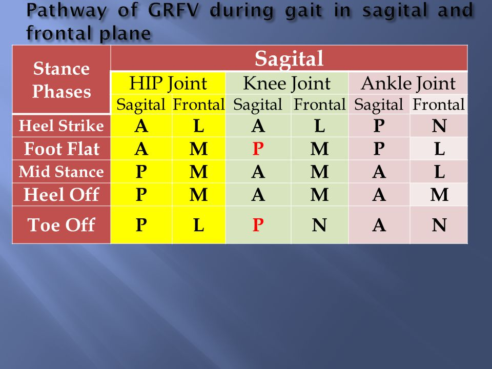 Stance Phases Sagital HIP JointKnee JointAnkle Joint SagitalFrontalSagitalFrontalSagitalFrontal Heel Strike ALALPN Foot FlatAMPMPL Mid Stance PMAMAL H