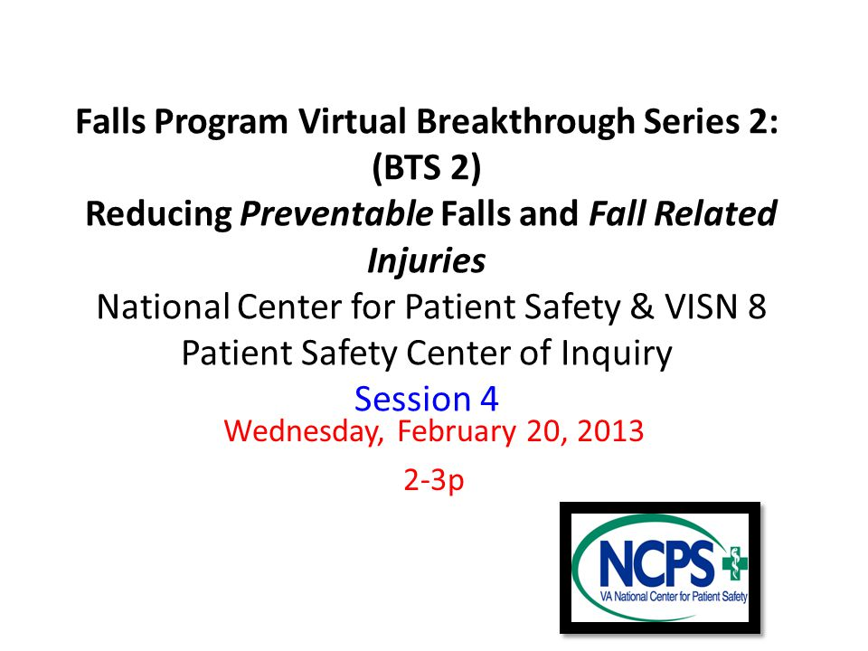 Falls Program Virtual Breakthrough Series 2: (BTS 2) Reducing Preventable Falls and Fall Related Injuries National Center for Patient Safety & VISN 8 Patient Safety Center of Inquiry Session 4 Wednesday, February 20, 2013 2-3p