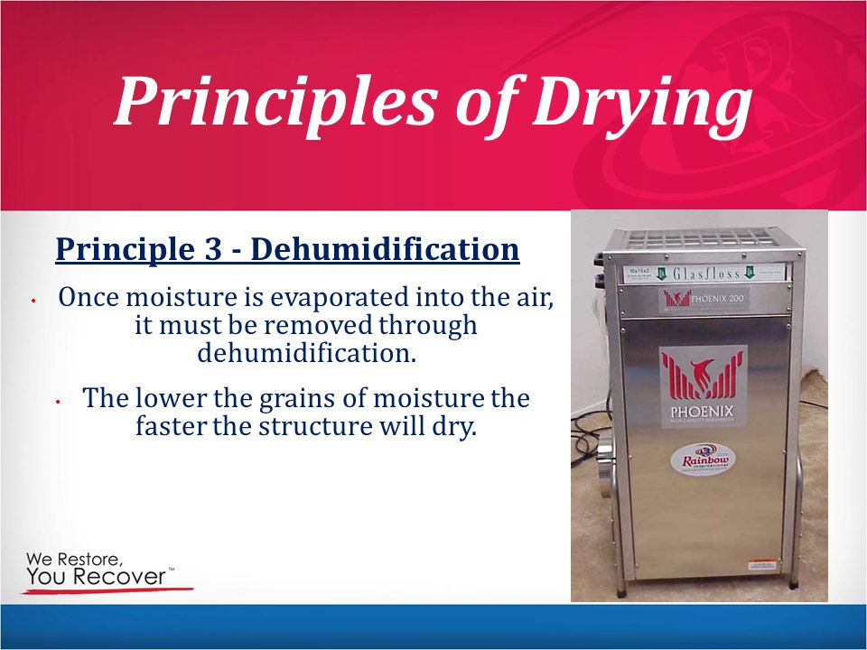 Principles of Drying Principle 3 - Dehumidification Once moisture is evaporated into the air, it must be removed through dehumidification.
