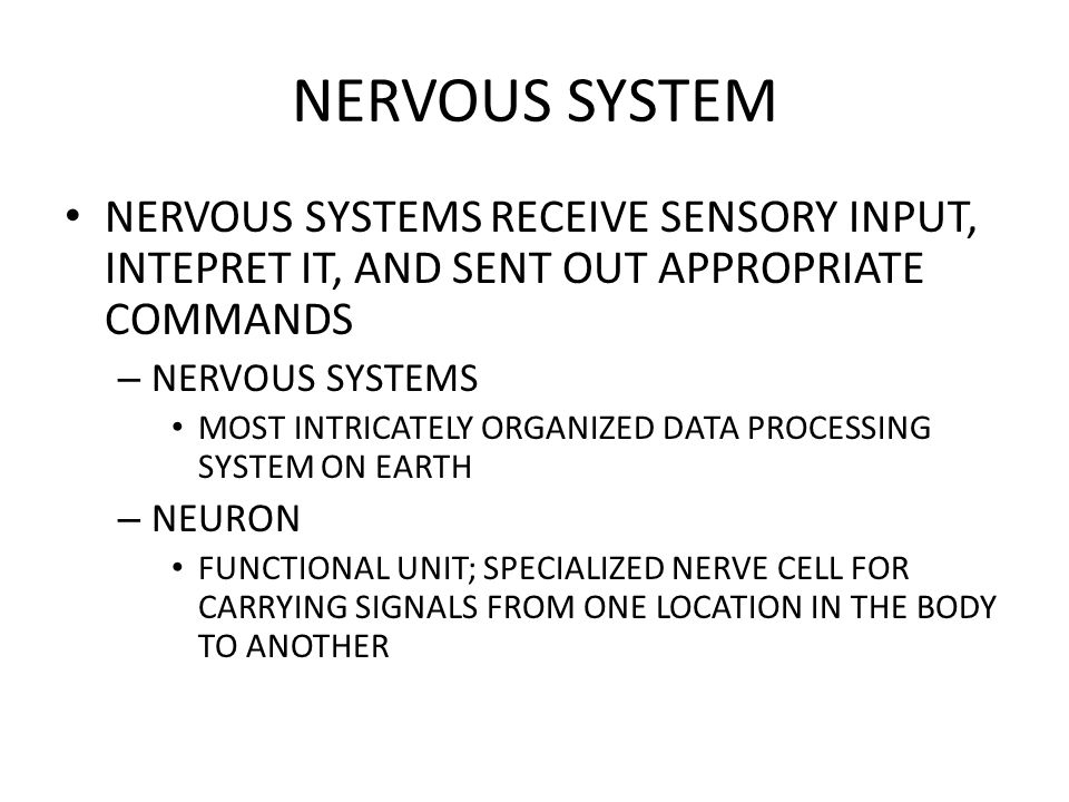 NERVOUS SYSTEMS RECEIVE SENSORY INPUT, INTEPRET IT, AND SENT OUT APPROPRIATE COMMANDS – NERVOUS SYSTEMS MOST INTRICATELY ORGANIZED DATA PROCESSING SYS