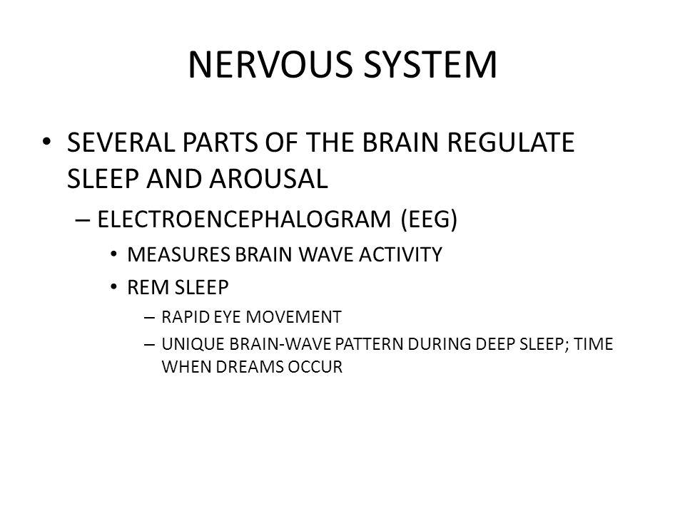 NERVOUS SYSTEM SEVERAL PARTS OF THE BRAIN REGULATE SLEEP AND AROUSAL – ELECTROENCEPHALOGRAM (EEG) MEASURES BRAIN WAVE ACTIVITY REM SLEEP – RAPID EYE M