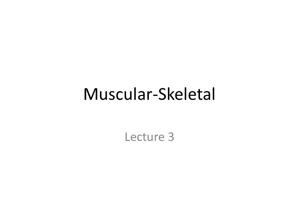 Muscular-Skeletal Lecture 3