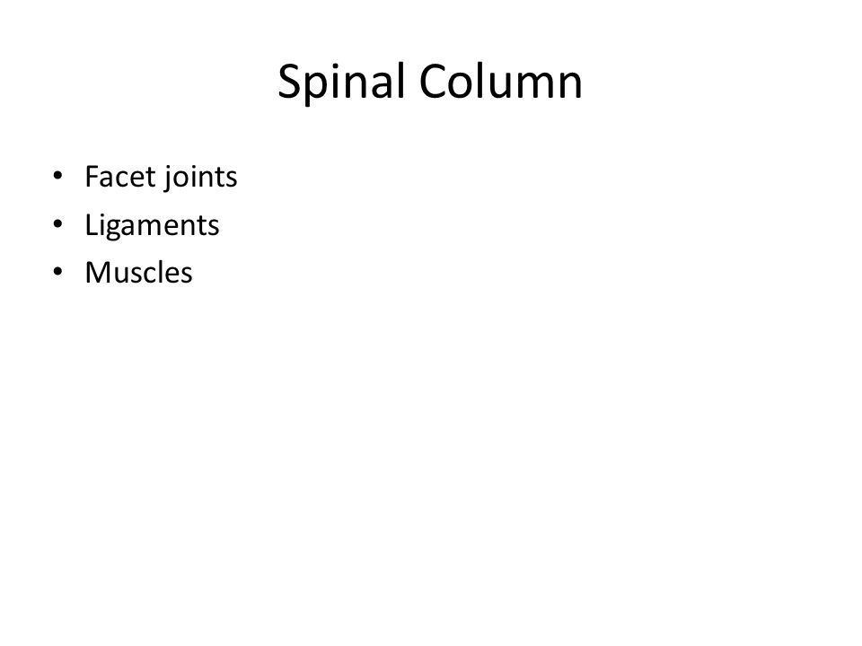 Spinal Column Facet joints Ligaments Muscles