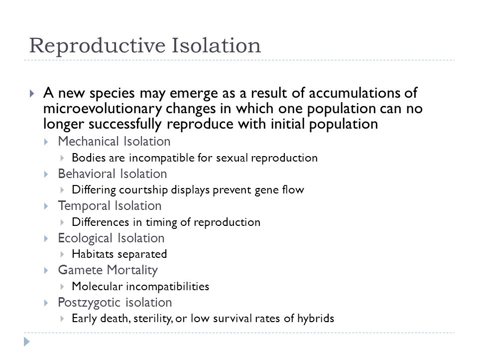 Reproductive Isolation  A new species may emerge as a result of accumulations of microevolutionary changes in which one population can no longer succ