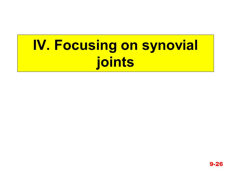 IV. Focusing on synovial joints 9-26