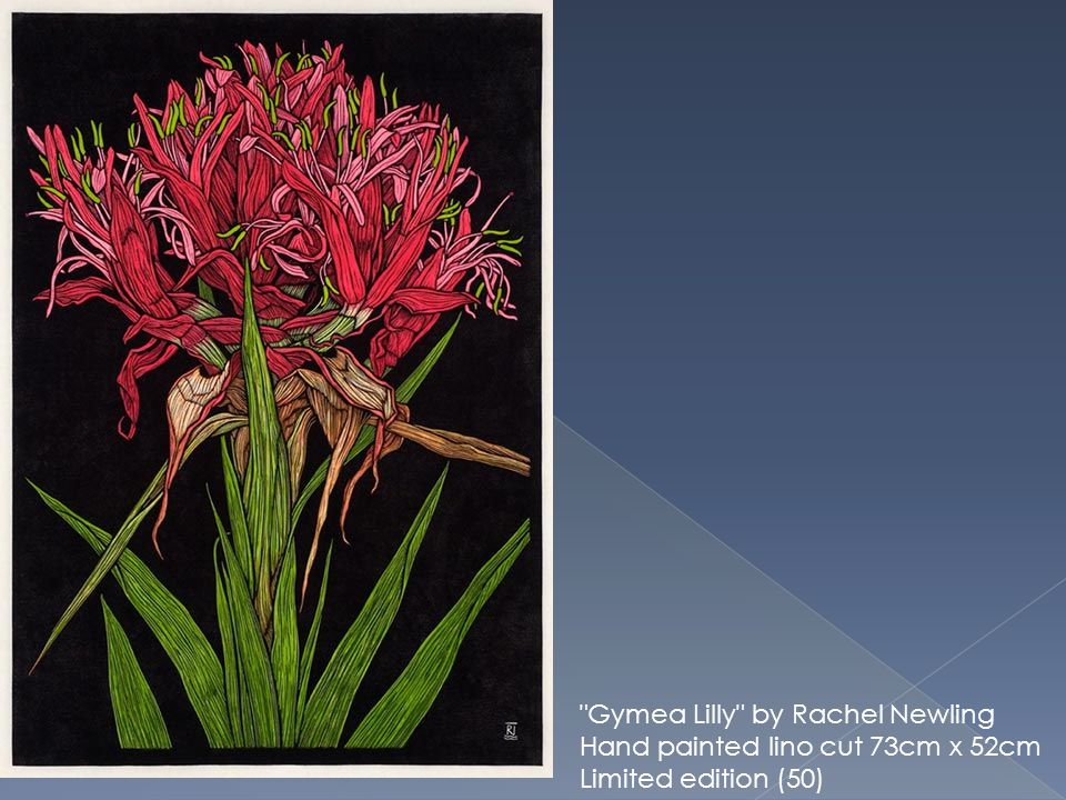 Gymea Lilly by Rachel Newling Hand painted lino cut 73cm x 52cm Limited edition (50)