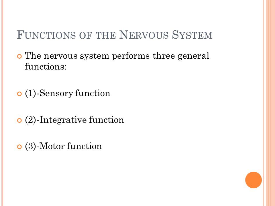 F UNCTIONS OF THE N ERVOUS S YSTEM The nervous system performs three general functions: (1)-Sensory function (2)-Integrative function (3)-Motor function