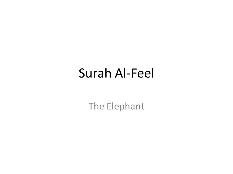 Surah Al-Feel The Elephant