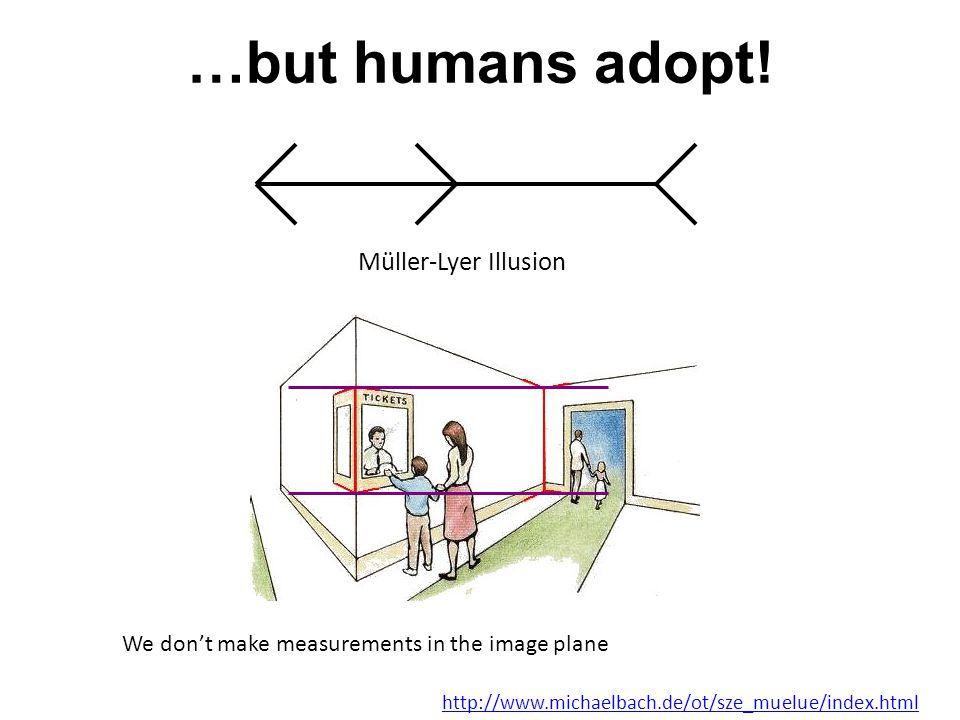 …but humans adopt.