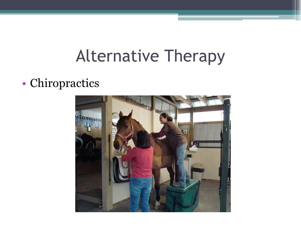 Alternative Therapy Chiropractics