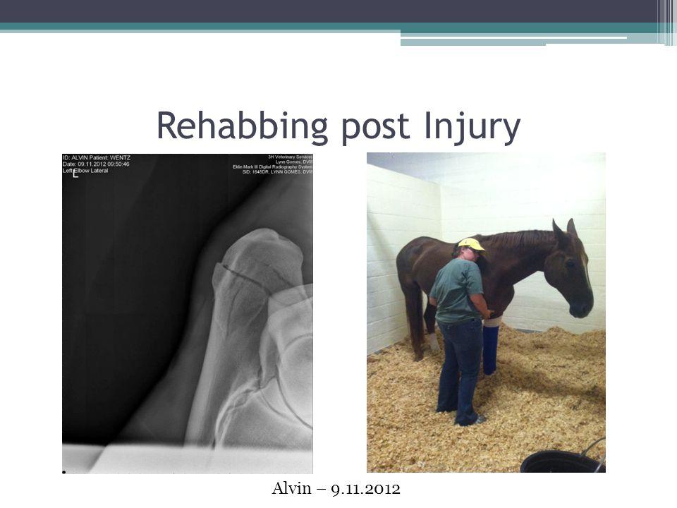 Rehabbing post Injury Alvin – 9.11.2012