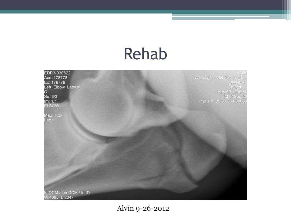 Rehab Alvin 9-26-2012