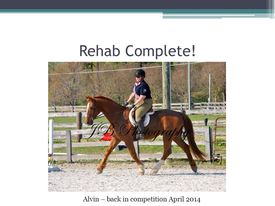 Rehab Complete! Alvin – back in competition April 2014