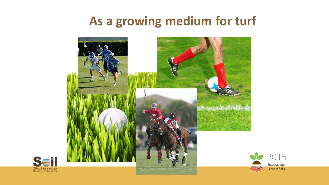 As a growing medium for turf