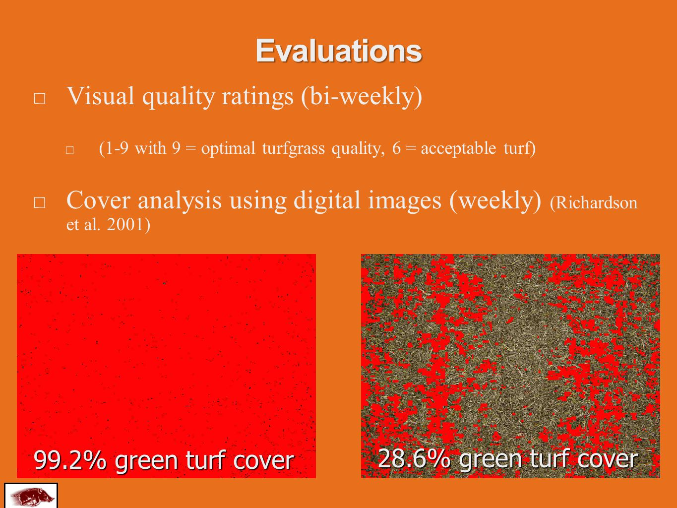 Evaluations Visual quality ratings (bi-weekly) (1-9 with 9 = optimal turfgrass quality, 6 = acceptable turf) Cover analysis using digital images (weekly) (Richardson et al.