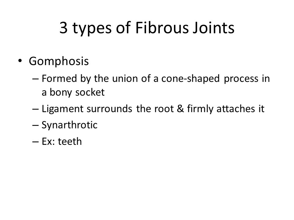 3 types of Fibrous Joints Gomphosis – Formed by the union of a cone-shaped process in a bony socket – Ligament surrounds the root & firmly attaches it