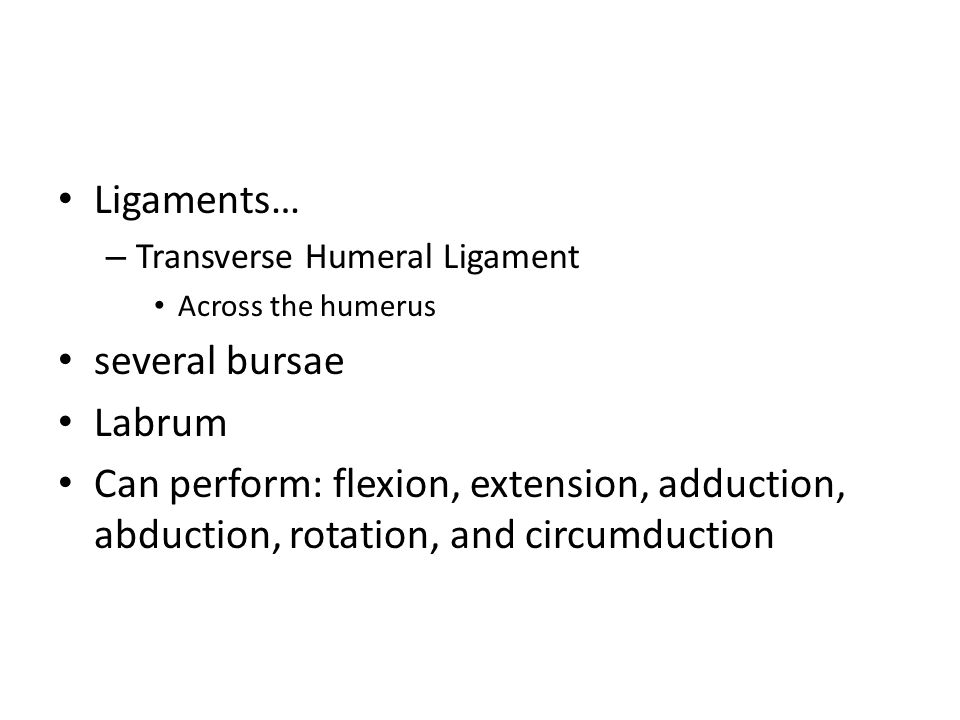 Ligaments… – Transverse Humeral Ligament Across the humerus several bursae Labrum Can perform: flexion, extension, adduction, abduction, rotation, and