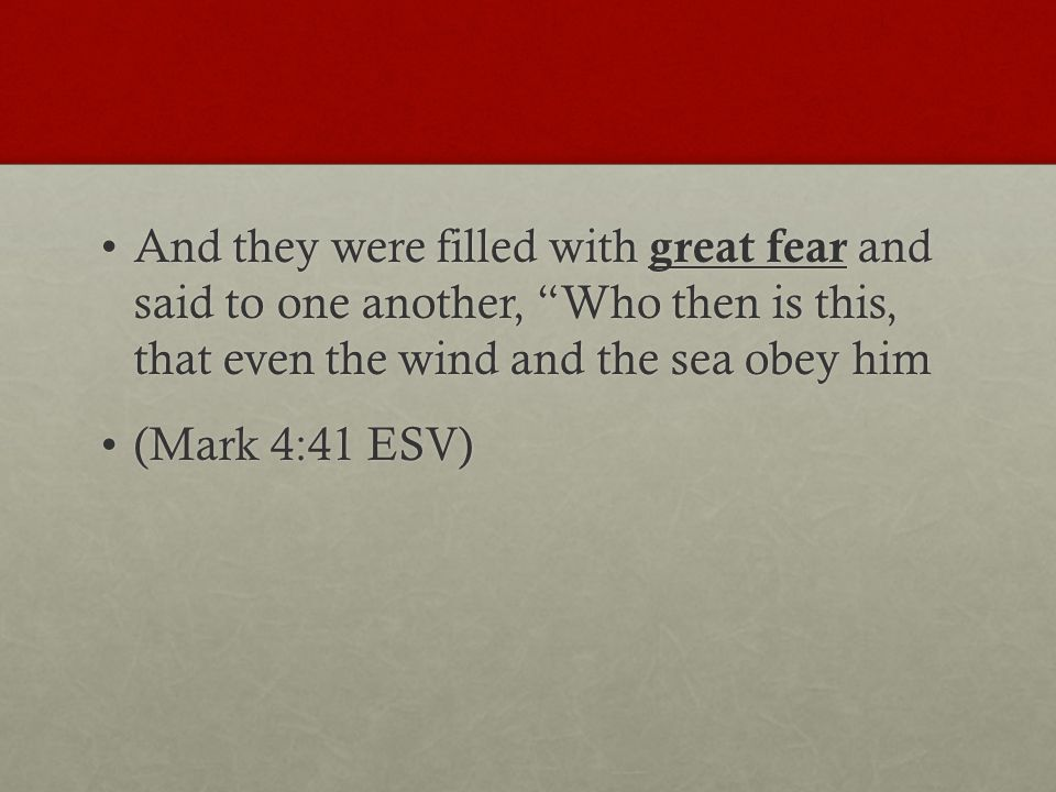 And they were filled with great fear and said to one another, Who then is this, that even the wind and the sea obey himAnd they were filled with great fear and said to one another, Who then is this, that even the wind and the sea obey him (Mark 4:41 ESV)(Mark 4:41 ESV)