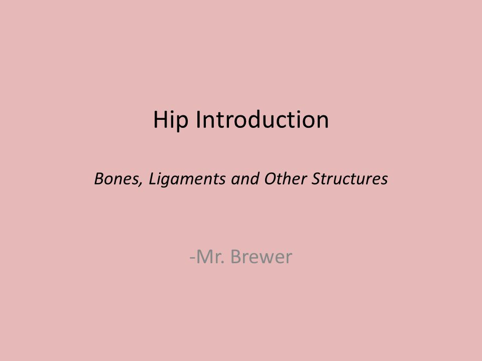 Hip Introduction Bones, Ligaments and Other Structures -Mr. Brewer