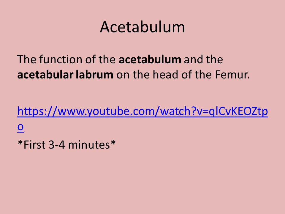 Acetabulum The function of the acetabulum and the acetabular labrum on the head of the Femur. https://www.youtube.com/watch?v=qlCvKEOZtp o *First 3-4