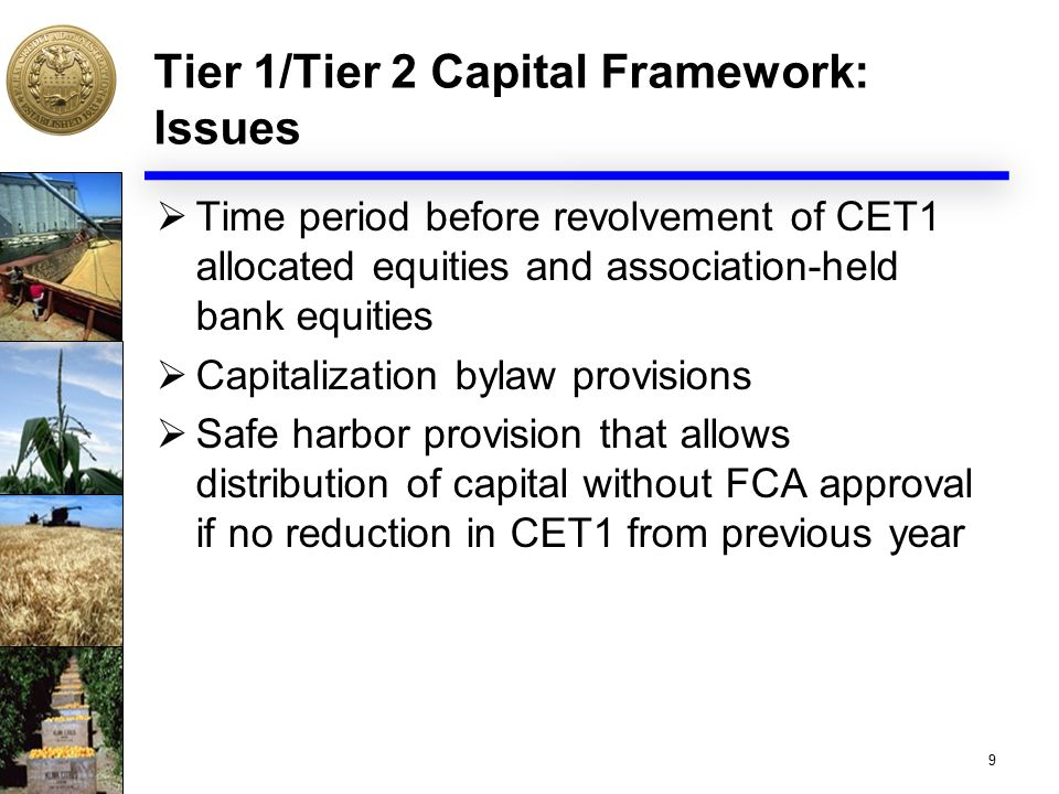 Tier 1/Tier 2 Capital Framework: Issues  Time period before revolvement of CET1 allocated equities and association-held bank equities  Capitalizatio