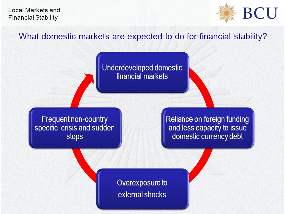 Underdeveloped domestic financial markets Reliance on foreign funding and less capacity to issue domestic currency debt Overexposure to external shocks Frequent non-country specific crisis and sudden stops What domestic markets are expected to do for financial stability.