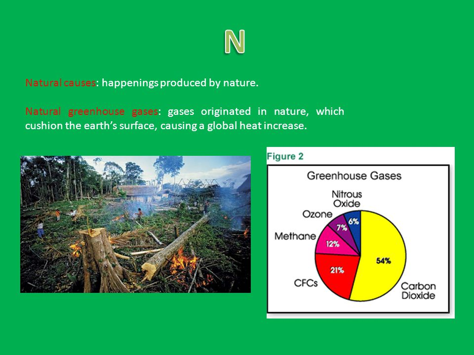 Natural causes: happenings produced by nature.