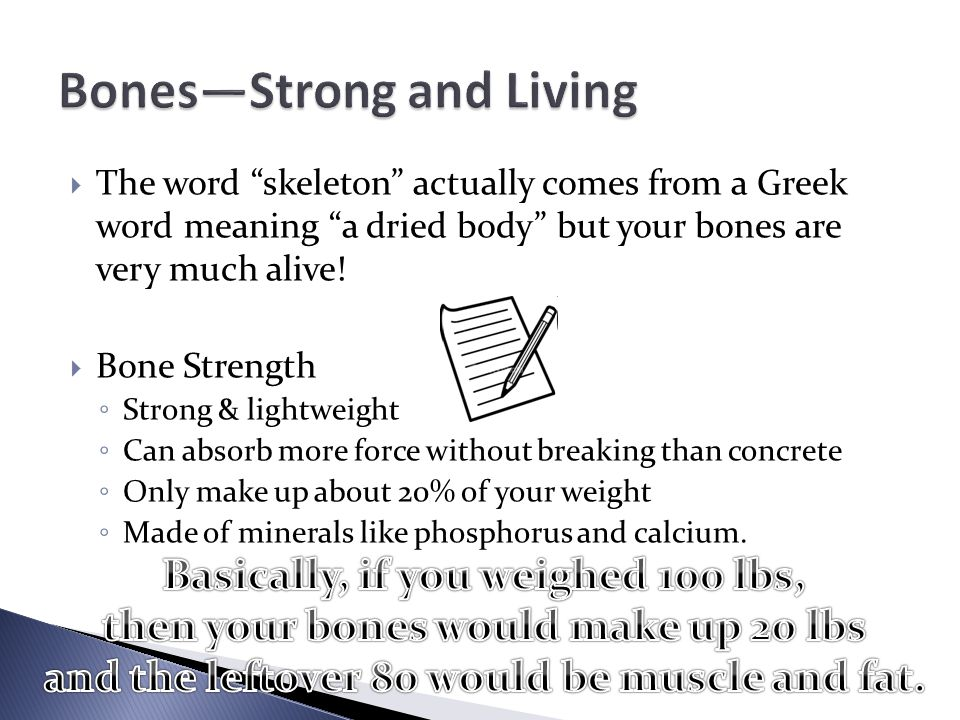  The word skeleton actually comes from a Greek word meaning a dried body but your bones are very much alive.