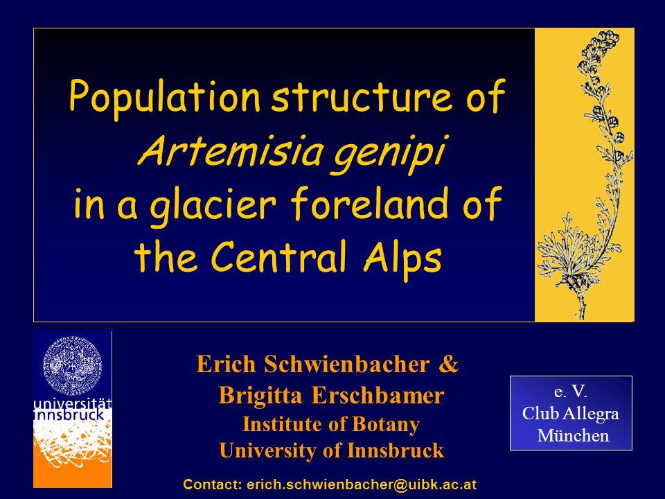 Population structure of Artemisia genipi in a glacier foreland of the Central Alps e. V. Club Allegra München Erich Schwienbacher & Brigitta Erschbame