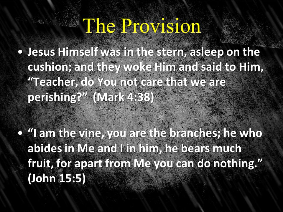 The Provision Jesus Himself was in the stern, asleep on the cushion; and they woke Him and said to Him, Teacher, do You not care that we are perishing (Mark 4:38)Jesus Himself was in the stern, asleep on the cushion; and they woke Him and said to Him, Teacher, do You not care that we are perishing (Mark 4:38) I am the vine, you are the branches; he who abides in Me and I in him, he bears much fruit, for apart from Me you can do nothing. (John 15:5) I am the vine, you are the branches; he who abides in Me and I in him, he bears much fruit, for apart from Me you can do nothing. (John 15:5)