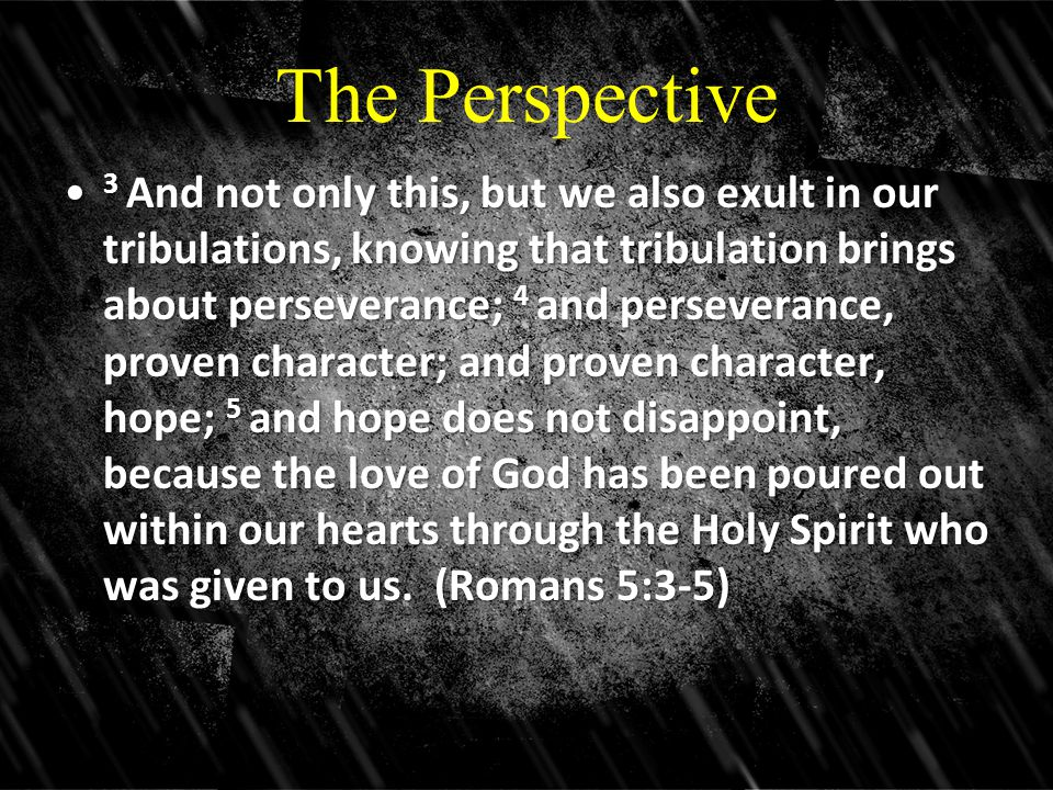 The Perspective 3 And not only this, but we also exult in our tribulations, knowing that tribulation brings about perseverance; 4 and perseverance, proven character; and proven character, hope; 5 and hope does not disappoint, because the love of God has been poured out within our hearts through the Holy Spirit who was given to us.