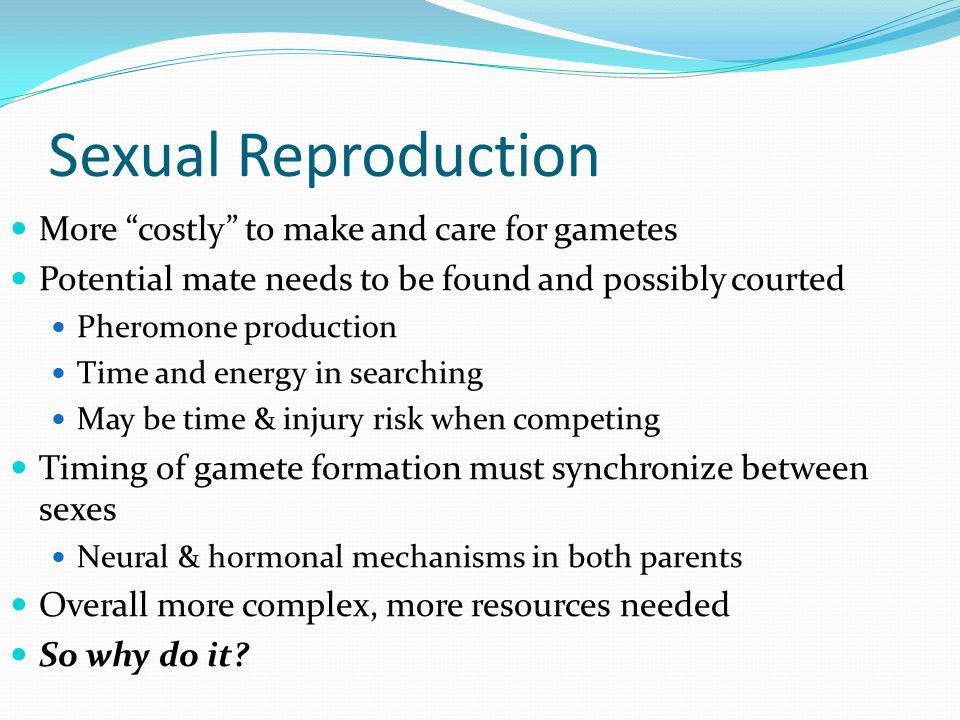Sexual Reproduction More costly to make and care for gametes Potential mate needs to be found and possibly courted Pheromone production Time and energy in searching May be time & injury risk when competing Timing of gamete formation must synchronize between sexes Neural & hormonal mechanisms in both parents Overall more complex, more resources needed So why do it