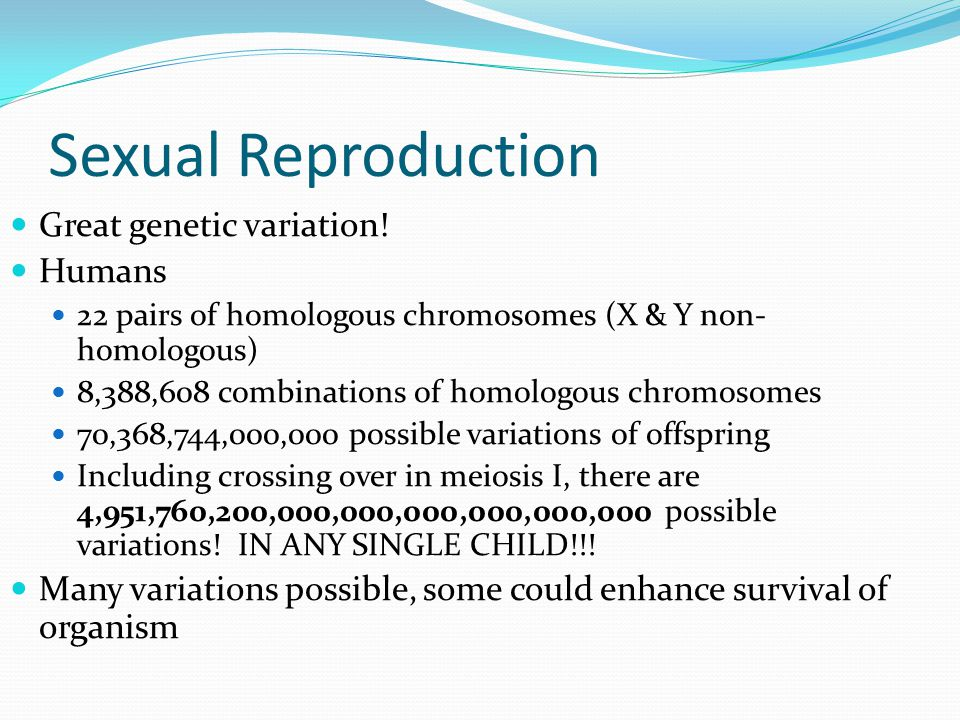 Sexual Reproduction Great genetic variation.