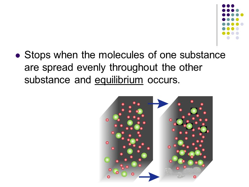 Stops when the molecules of one substance are spread evenly throughout the other substance and equilibrium occurs.