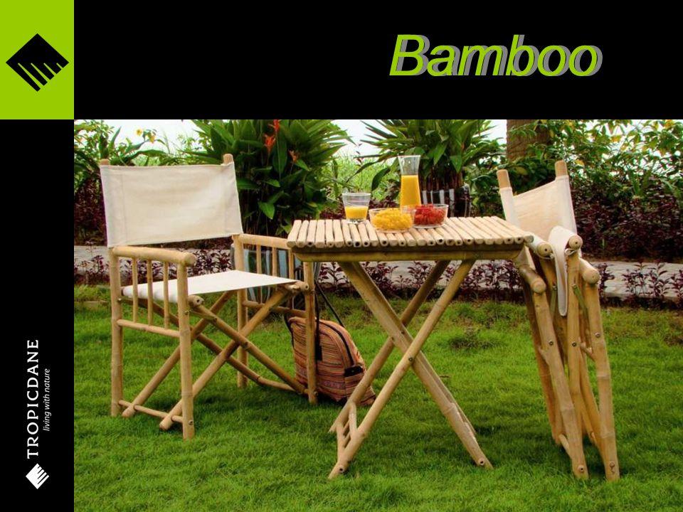 Camper folding stool