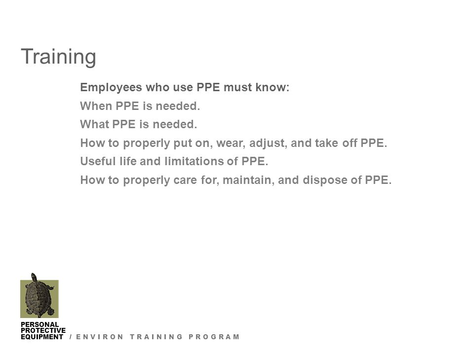 PERSONAL PROTECTIVE EQUIPMENT / E N V I R O N T R A I N I N G P R O G R A M Training Employees who use PPE must know: When PPE is needed.