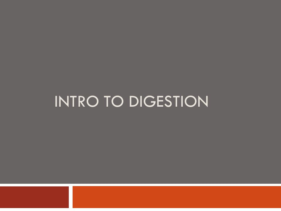 INTRO TO DIGESTION