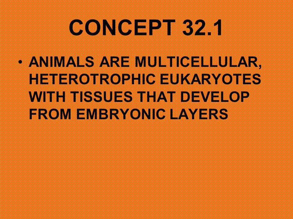 CONCEPT 32.1 ANIMALS ARE MULTICELLULAR, HETEROTROPHIC EUKARYOTES WITH TISSUES THAT DEVELOP FROM EMBRYONIC LAYERS