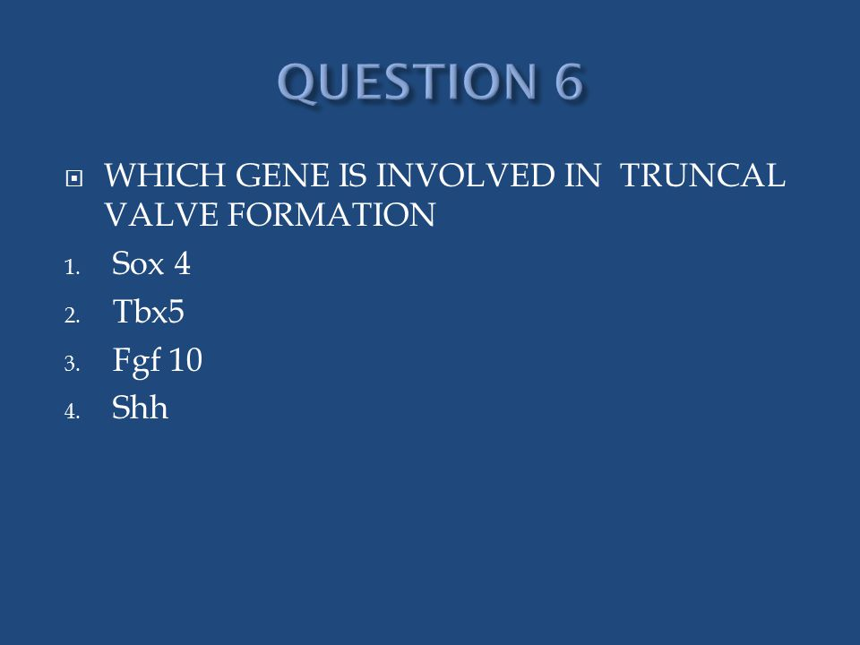  WHICH GENE IS INVOLVED IN TRUNCAL VALVE FORMATION 1. Sox 4 2. Tbx5 3. Fgf 10 4. Shh
