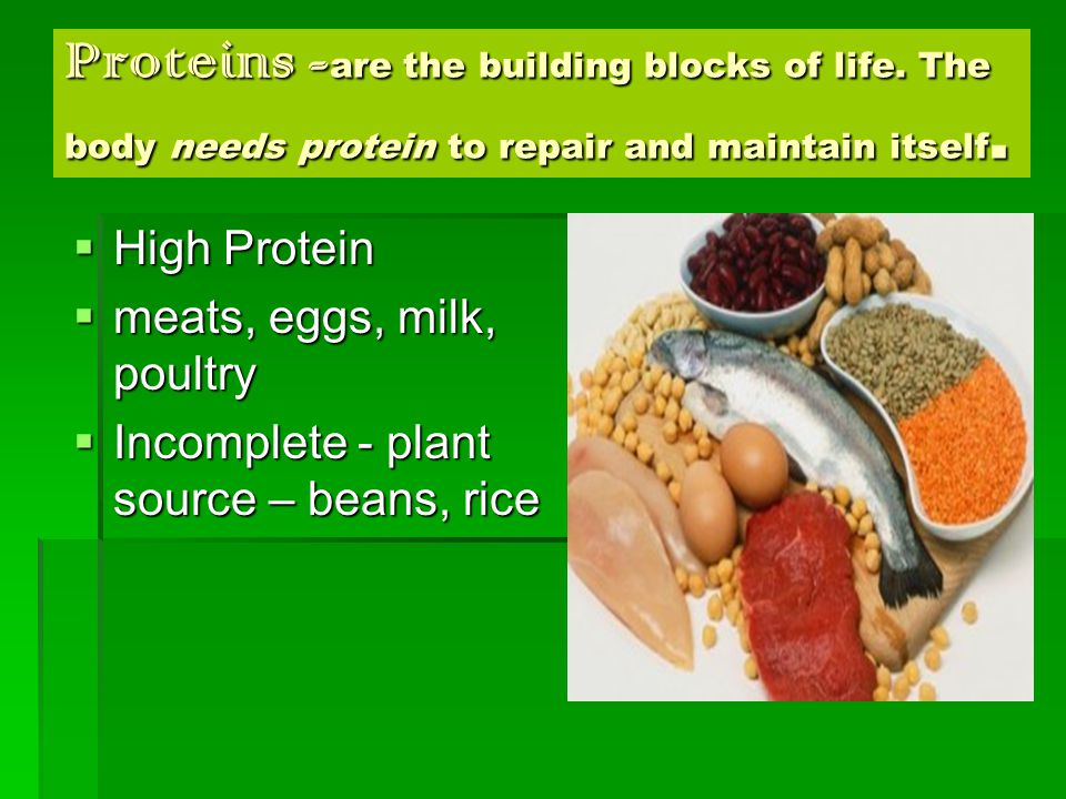 Proteins - are the building blocks of life. The body needs protein to repair and maintain itself.