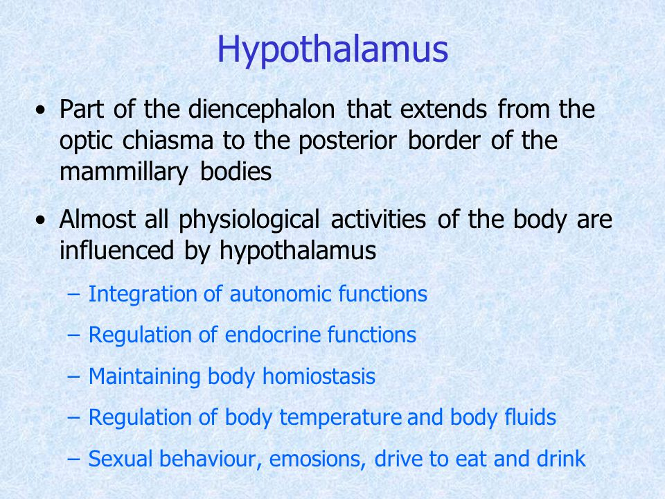 Hypothalamus Part of the diencephalon that extends from the optic chiasma to the posterior border of the mammillary bodies Almost all physiological activities of the body are influenced by hypothalamus –Integration of autonomic functions –Regulation of endocrine functions –Maintaining body homiostasis –Regulation of body temperature and body fluids –Sexual behaviour, emosions, drive to eat and drink