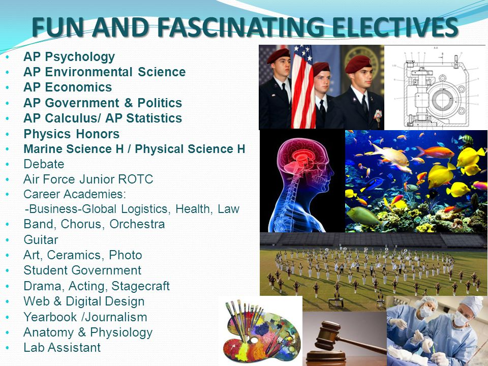 FUN AND FASCINATING ELECTIVES AP Psychology AP Environmental Science AP Economics AP Government & Politics AP Calculus/ AP Statistics Physics Honors Marine Science H / Physical Science H Debate Air Force Junior ROTC Career Academies: -Business-Global Logistics, Health, Law Band, Chorus, Orchestra Guitar Art, Ceramics, Photo Student Government Drama, Acting, Stagecraft Web & Digital Design Yearbook /Journalism Anatomy & Physiology Lab Assistant