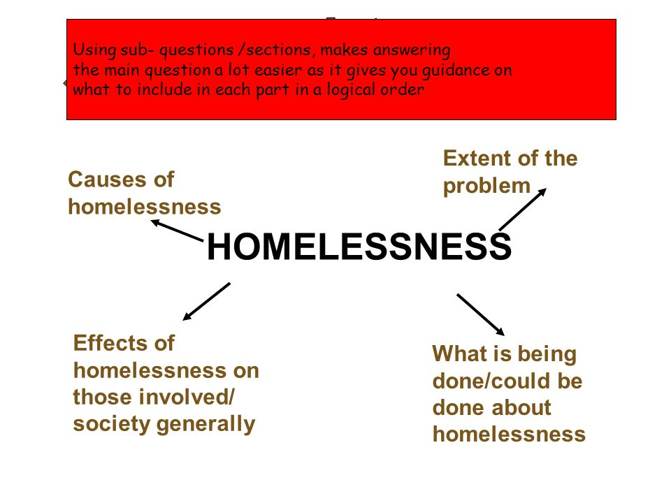 essay about homelessness causes