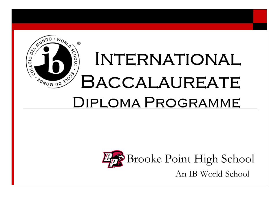 What is the IB Diploma Programme (IB DP).
