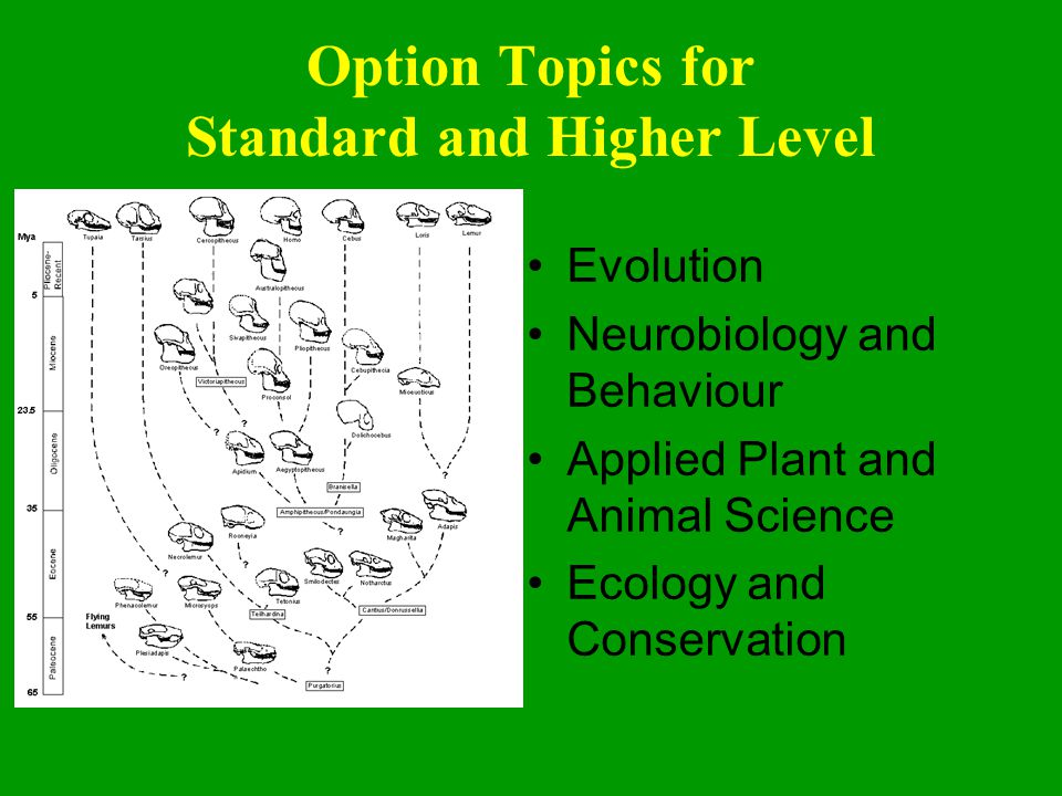 Option Topics for Standard and Higher Level Evolution Neurobiology and Behaviour Applied Plant and Animal Science Ecology and Conservation