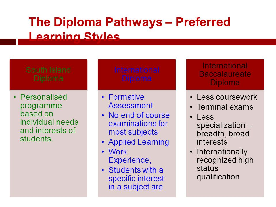 The Diploma Pathways – Preferred Learning Styles South Island Diploma Personalised programme based on individual needs and interests of students.