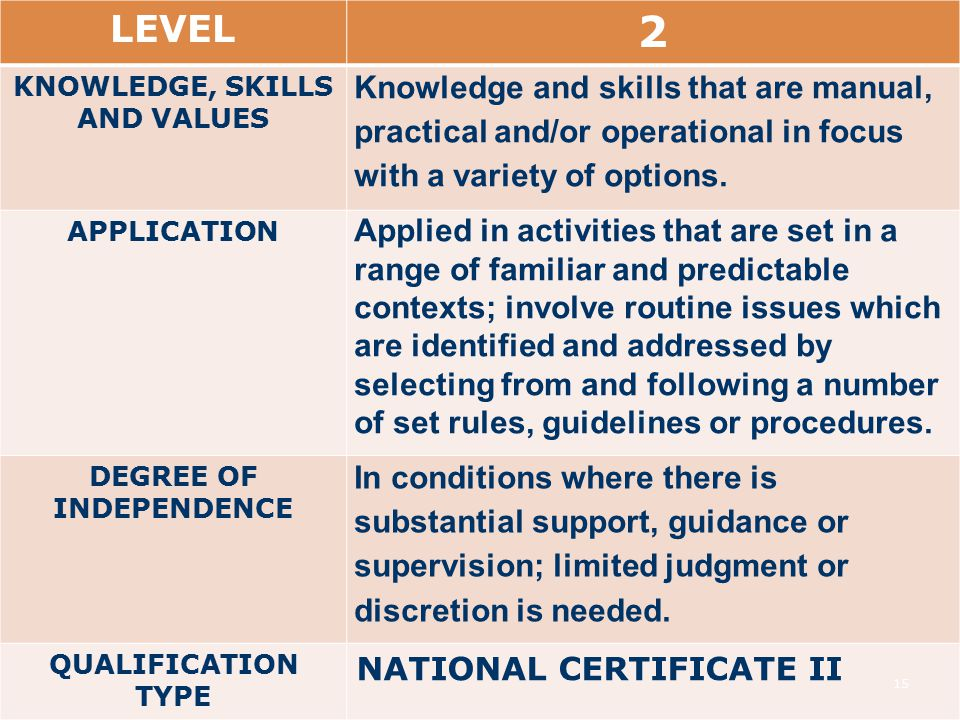 LEVEL 2 KNOWLEDGE, SKILLS AND VALUES Knowledge and skills that are manual, practical and/or operational in focus with a variety of options.